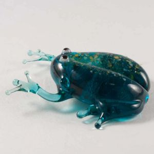 Glass Frog, fig. 3