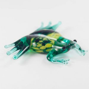 Glass Green Frog, fig. 1
